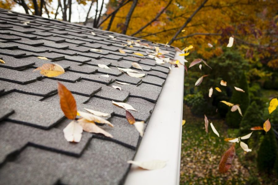 Your Gutter Cover Options — And How To Pick The Best Gutter Guards